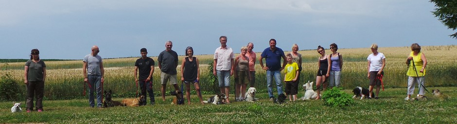 stage-education-canine-france-collectif